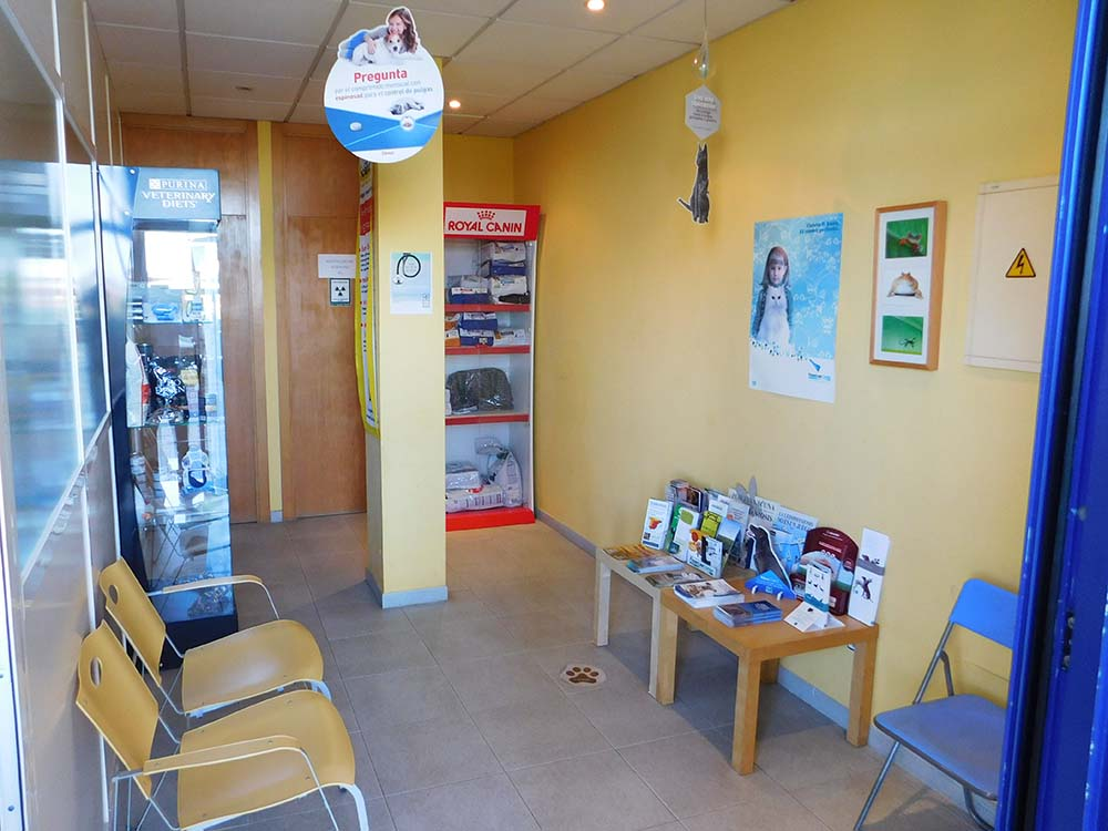 Reception - Veterinary Clinic El Molinar