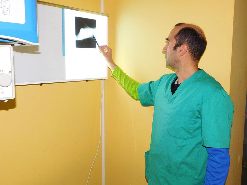 Dienstleistungen von Tierklinik El Molinar
